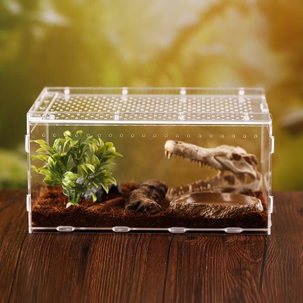 Acryl Reptilien Schaukasten box