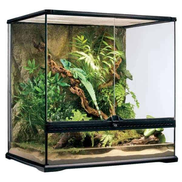 Exo Terra Glasterrarium Medium Hoehe 60cm