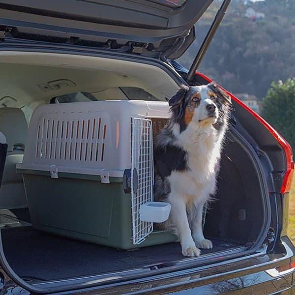 Ferplast atlas el autobox Hunde