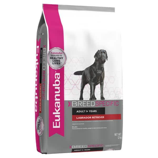 Labrador retriever Hundefutter Eukanuba