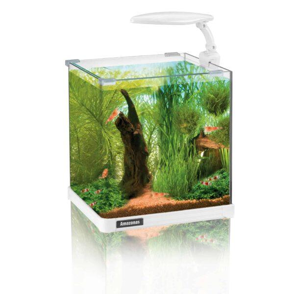 Nano aquarium LED amazonas kleine aquarien