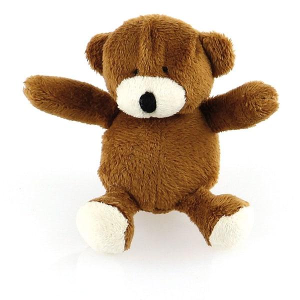 Teddybaer Brumi mit Quietscher