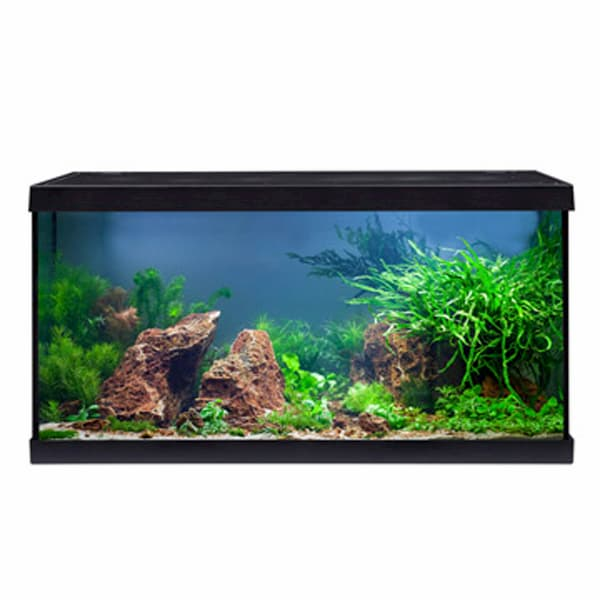 aquarium eheim aquastar led 54