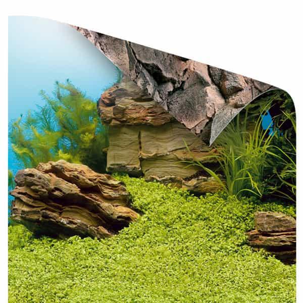 aquarium hintergrund poster juwel