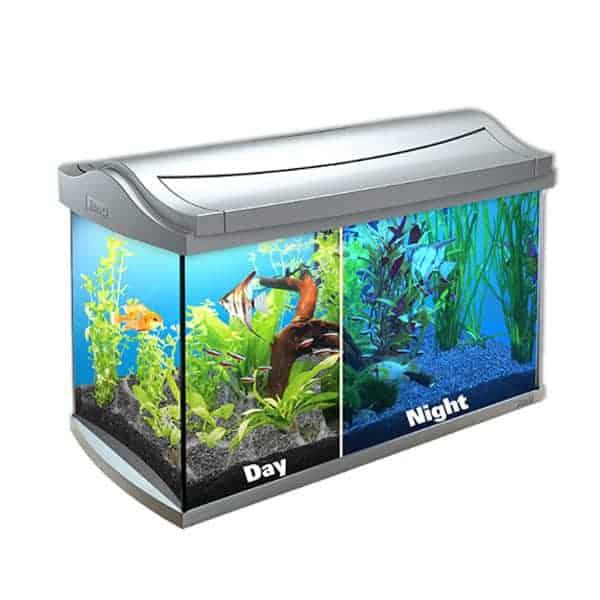 aquarium tetra aquaart led discover line 60l