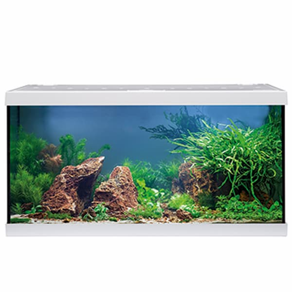 aquastar 54 led aquarium weiss