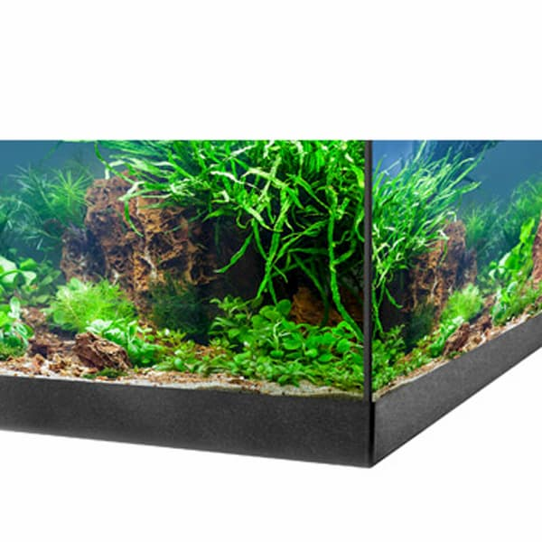aquastar led aquarium eheim 1