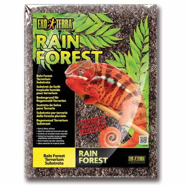 bodengrund regenwald terrarium substrat