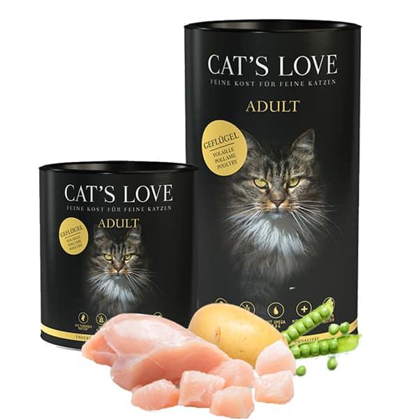 cats love trockenfutter katzen gefluegel