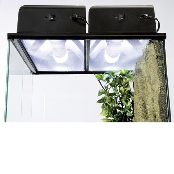 compact top terrarien beleuchtung