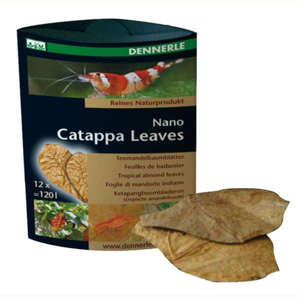 dennerle nano catappa leaves seemandelbaum blaetter