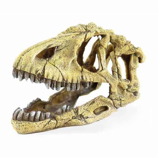 dinosaurier schaedel deko terrarium aquarium
