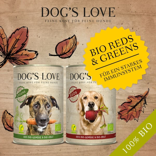dogs lobe vegan nassfutter bio