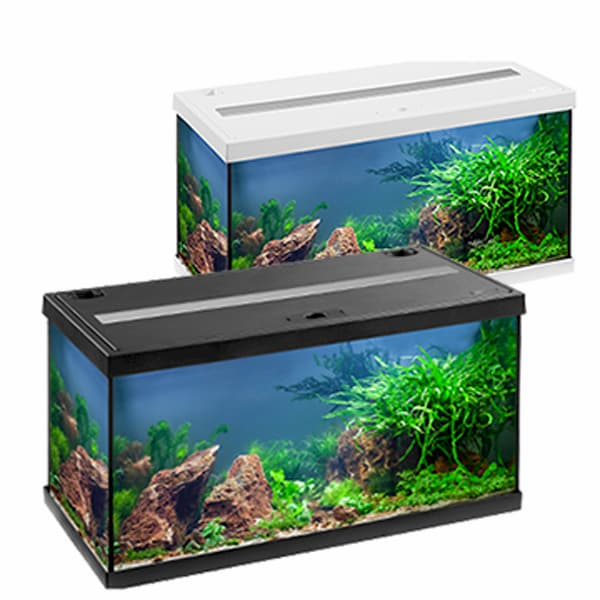 eheim aquastar led 54 aquarium