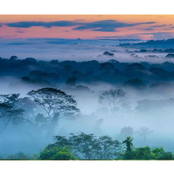 exo terra fogger terrarien nebelerzeuger