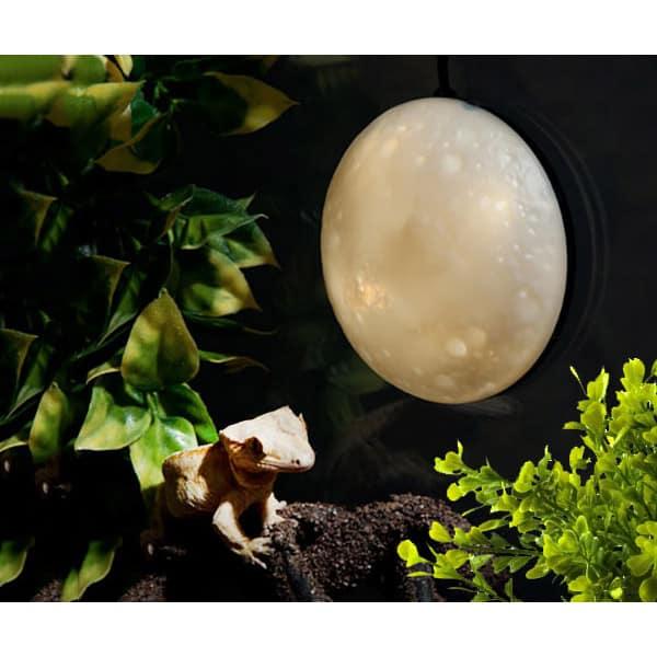 exo terra full vollmond licht full moon