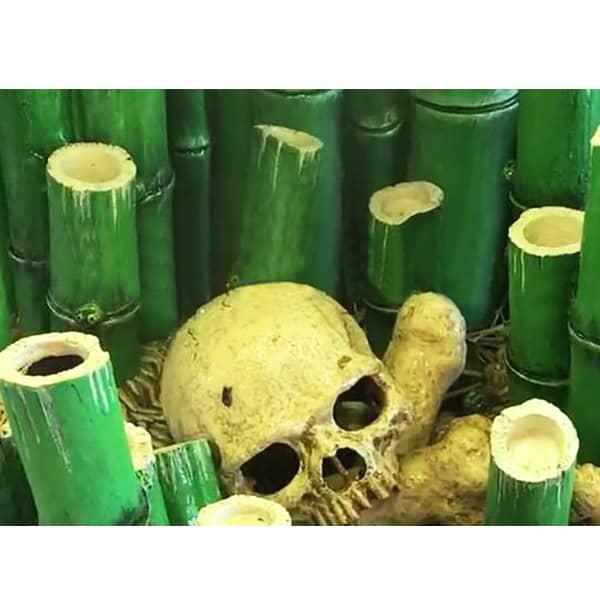 exo terra totenkopf primate skull kaufen