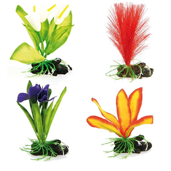 exotische kunstpflanzen aquarium kaufen