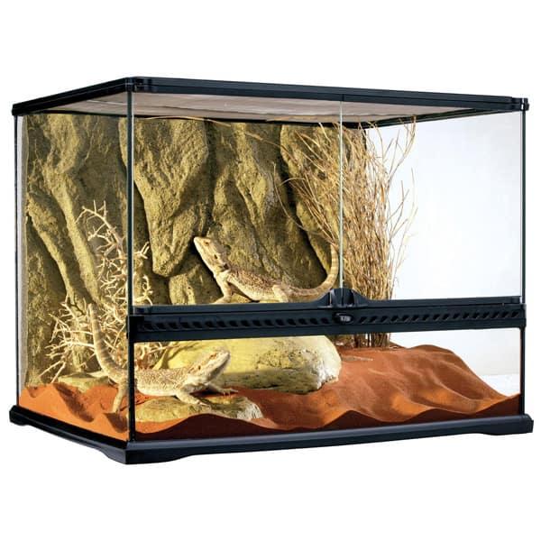 glasterrarium 45cm reptilien kaufen