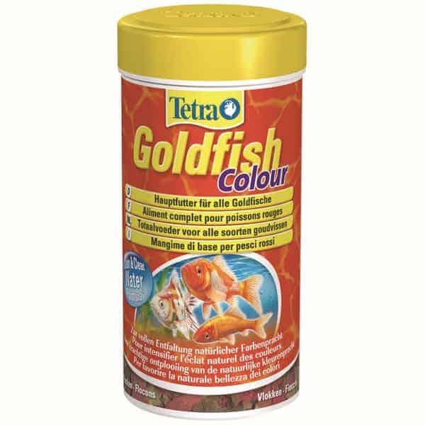 goldfish colour hauptfutter goldfische