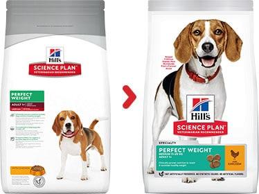 hill s veterinary perfect weight medium