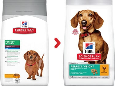 Hill's adult mini perfect weight hundefutter