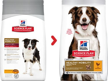 Hill's healthy mobility adult medium hundefutter