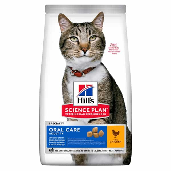 hills oral care katzen bestellen