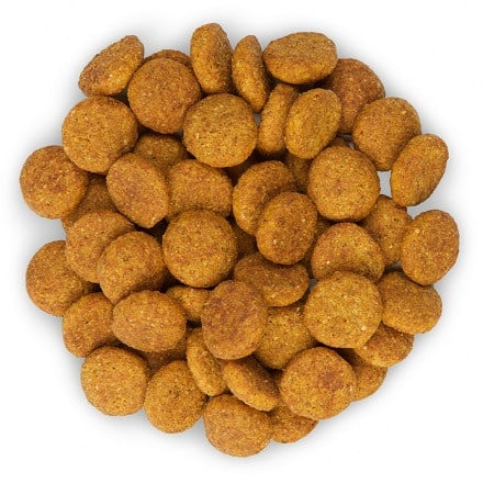 Hill's perfect weight veterinary hundefutter