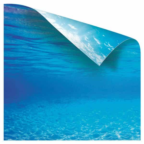 hintergrund bild aquarium poster 2 1
