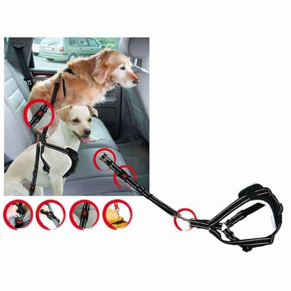 hunde auto sicherheitsgurt dogsafe m