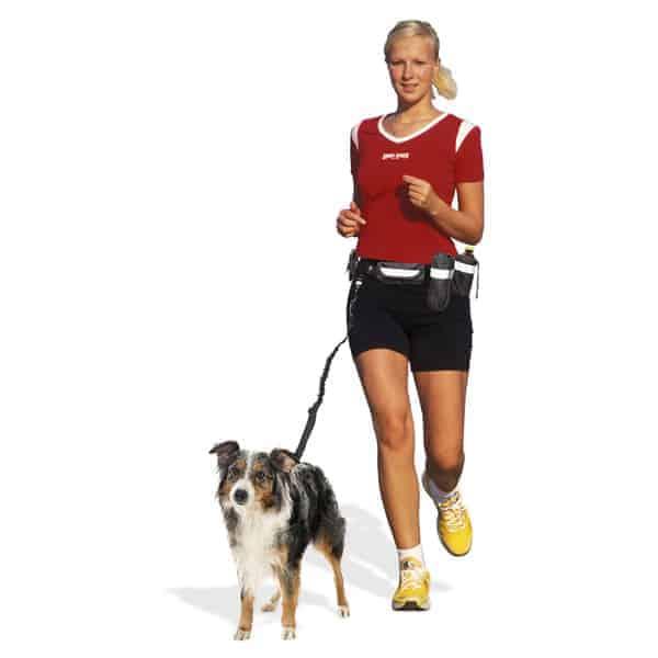 hunde jogging leinen set plus swisspet