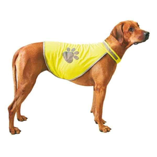 hunde sicherheitsweste leuchted safety dog s