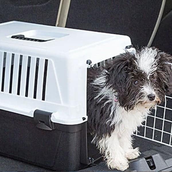 Hunde transportbox Ferplast atlas el