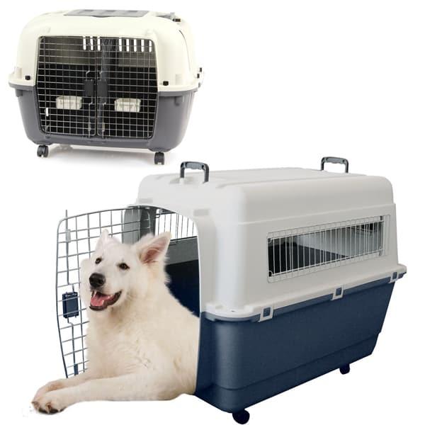 hunde transportboxen fb iata flugzeug konform