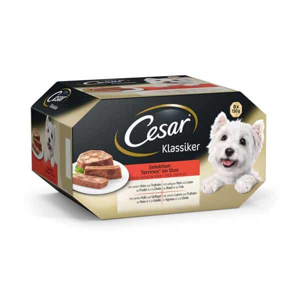 hundefutter cesar klassiker selection