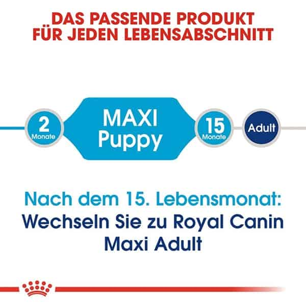 hundefutter royal canin maxi puppy