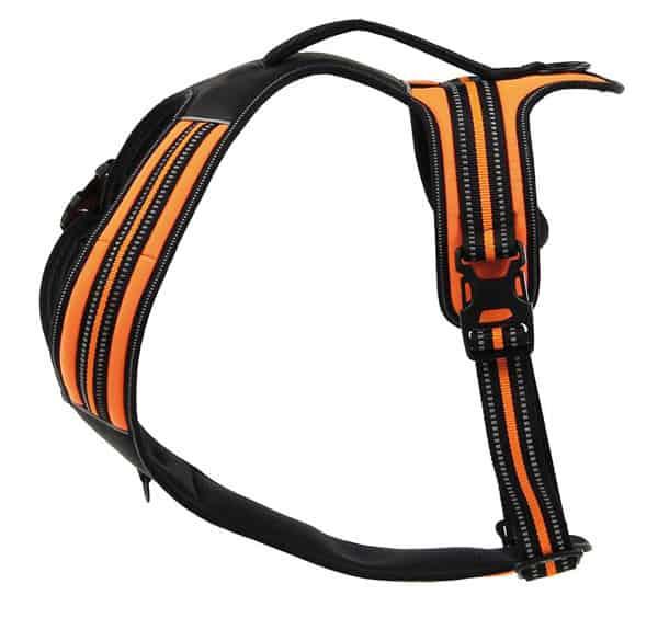 hundegeschirr schwarz orange reflektirend