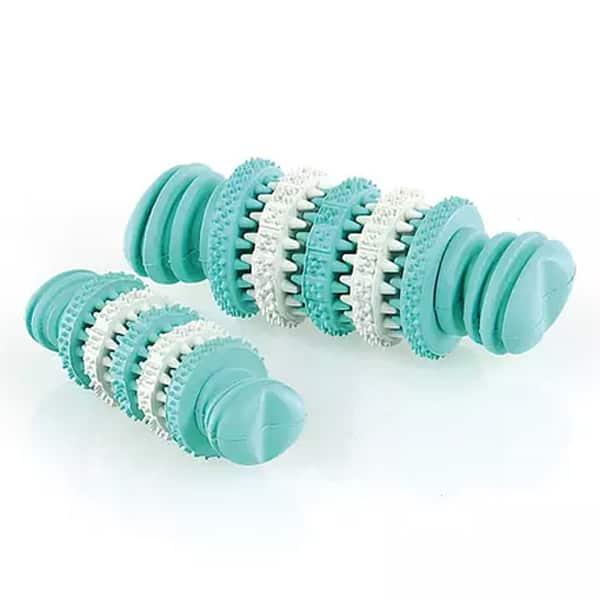 hundespielzeuge dental bone mint 1