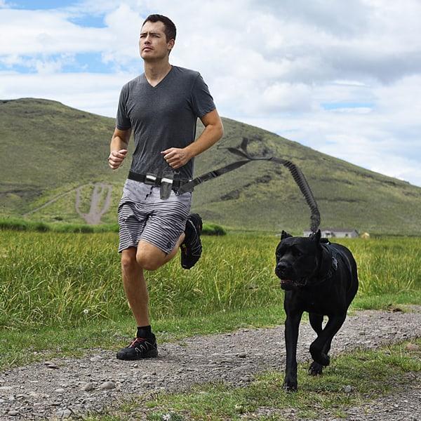 jogging hundeleine mit bauchgurt