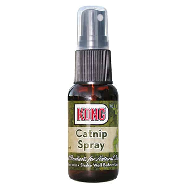katzenminze spray kong catnip 1