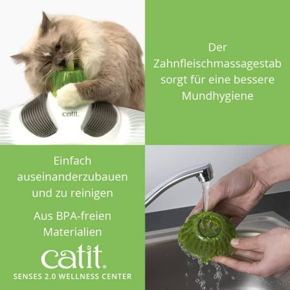 katzenspielzeug catit wellness