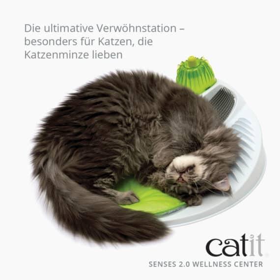 katzenspielzeug wellness center catit