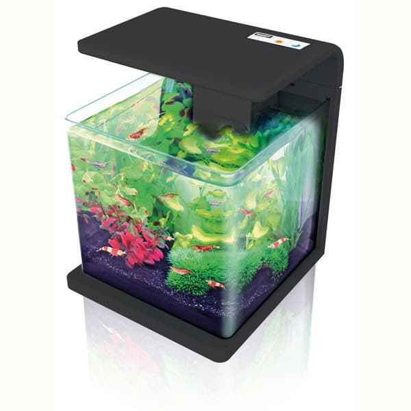 kleines aquarium 15l kaufen nano