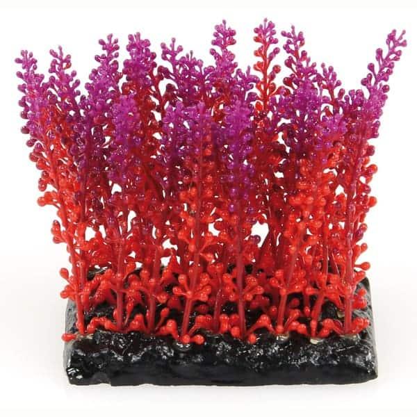 kuenstliche aquarienpflanzen amazonas violett rot