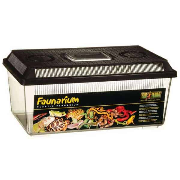 kunststoffbox faunarium reptilien box