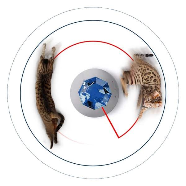 laser katzenspielzeug schweiz kaufen