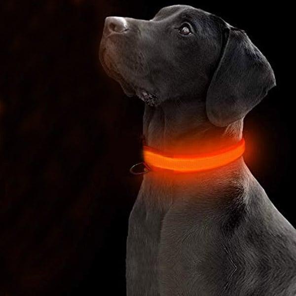 leucht hundehalsband dunkle hunde nachts
