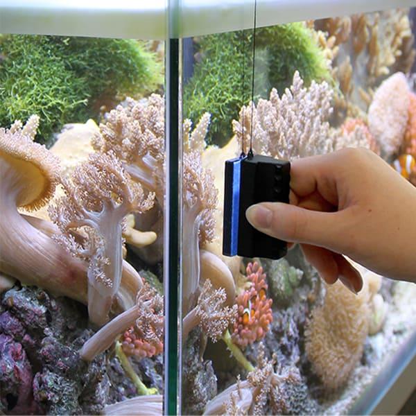 marina aquarium magnet scheibenreiniger