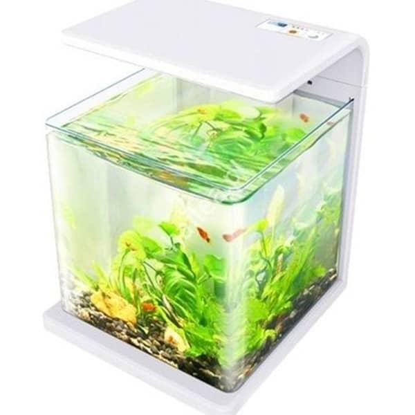 mini aquarium e15 amazonas bestellen